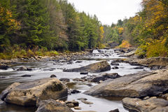 Autumn in Swallow Falls Royalty Free Stock Images