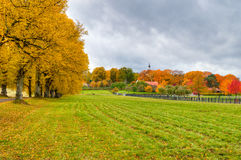 Autumn in Swden Royalty Free Stock Images