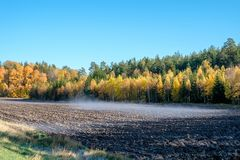 Autumn in Sweden. Autumn in the countryside of Ostergotland, Sweden on a sunny day in October 2017 Royalty Free Stock Photography