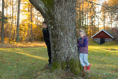 Autumn in Sweden Royalty Free Stock Images