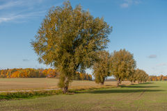 Autumn in Sweden. Autumn in the countryside of Vikbolandet in Ostergotland, Sweden Royalty Free Stock Image
