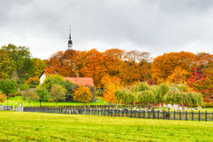 Autumn in Sweden Stock Image