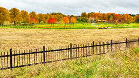 Autumn in Sweden Royalty Free Stock Photography