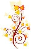 Autumn swirl Royalty Free Stock Photos