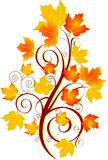 Autumn swirl Royalty Free Stock Images