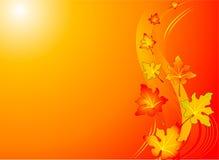 Autumn swirl backgroound Stock Photos