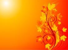 Autumn swirl backgroound Stock Photography
