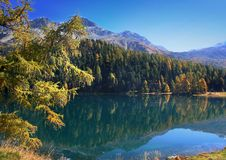 Autumn on the swiss lake Royalty Free Stock Photo