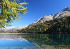 Autumn on the swiss lake stock photo