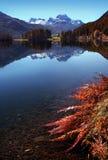 Autumn swiss lake stock photography
