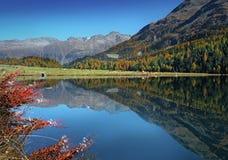 Autumn on the swiss lake royalty free stock photo