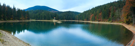Autumn Synevir mountain lake panorama Stock Images