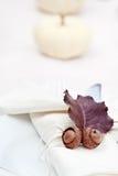 Autumn Table Lizenzfreies Stockfoto