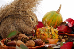 Autumn table setting Stock Photography