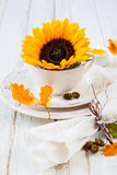 Autumn Table Setting Royaltyfri Fotografi