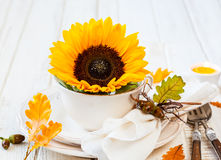 Autumn Table Setting Fotos de Stock Royalty Free