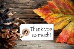 Autumn Tag med tackar dig så mycket royaltyfri bild