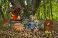 Autumn Tale Fotografia de Stock