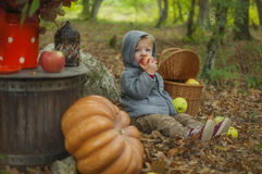 Autumn Tale Fotografie Stock Libere da Diritti