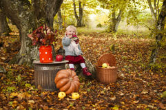 Autumn Tale Fotografia Stock