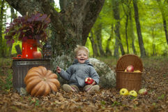 Autumn Tale Royalty Free Stock Photo