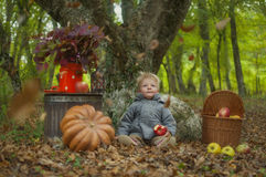 Autumn Tale Stock Photography