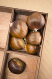 Autumn taste, chestnuts Stock Images