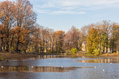 Autumn in Taurian park Royalty Free Stock Image