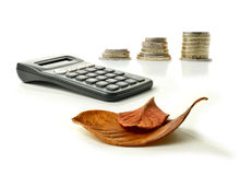 Autumn Tax Returns Royalty Free Stock Photography