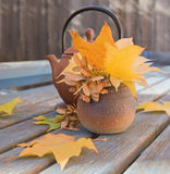 Autumn tea Royalty Free Stock Image