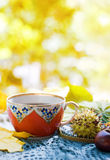 Autumn tea Stock Images