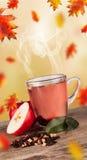 Autumn tea Royalty Free Stock Photos