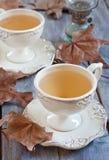 Autumn Tea Foto de archivo libre de regalías