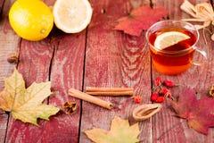 Autumn Tea Imagen de archivo