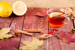 Autumn Tea Imagenes de archivo