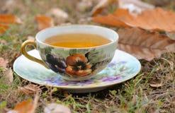Autumn Tea Stockfotos
