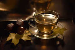 Autumn Tea immagine stock