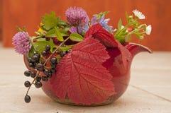 Autumn tea atmosphere Royalty Free Stock Image