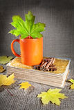 Autumn tea and book Stock Photos