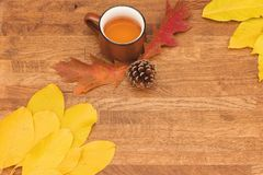 Autumn tea in brown vintage cup on old rustic wooden table with autumn leaves and conch. stock image