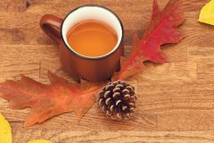 Autumn tea in brown vintage cup on old rustic wooden table with autumn leaves and conch. royalty free stock photos