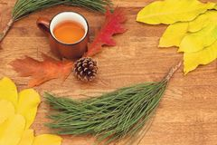Autumn tea in brown vintage cup on old rustic wooden table with autumn leaves, conch and pine branch. stock photo