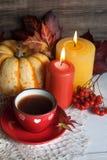 Autumn tea Royalty Free Stock Images
