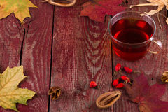Autumn tea. Autumn hot tea with a dogrose and cinnamon Stock Photography