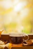 Autumn tea Stock Photos