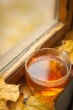Autumn tea Royalty Free Stock Photography