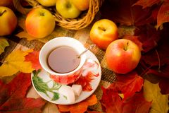 Free Autumn Tea Party Royalty Free Stock Photo - 100722745