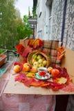 Autumn Tea Party Stockfotos