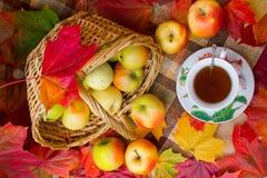 Autumn Tea Party Lizenzfreies Stockfoto