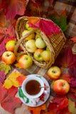 Autumn Tea Party Lizenzfreie Stockfotos